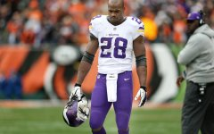 Minnesota Vikings running back Adrian Peterson (28) )