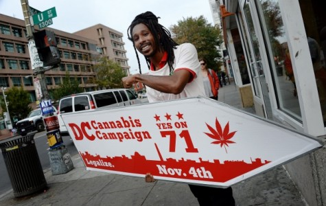 The Campaign for Cannabis