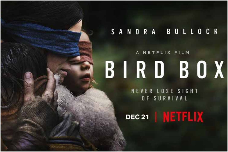 Following+the+release+of+the+Netflix+horror+film+BIRD+BOX%2C+starring+Academy+Award+winner+Sandra+Bullock+and+an+all-star+cast%2C+viewers+engaged+in+a+%22Blindfold+Challenge%2C%22+leading+Netflix+to+issue+a+warning%2C+asking+fans+to+stop+engaging+in+this+dangerous+act+immediately.
