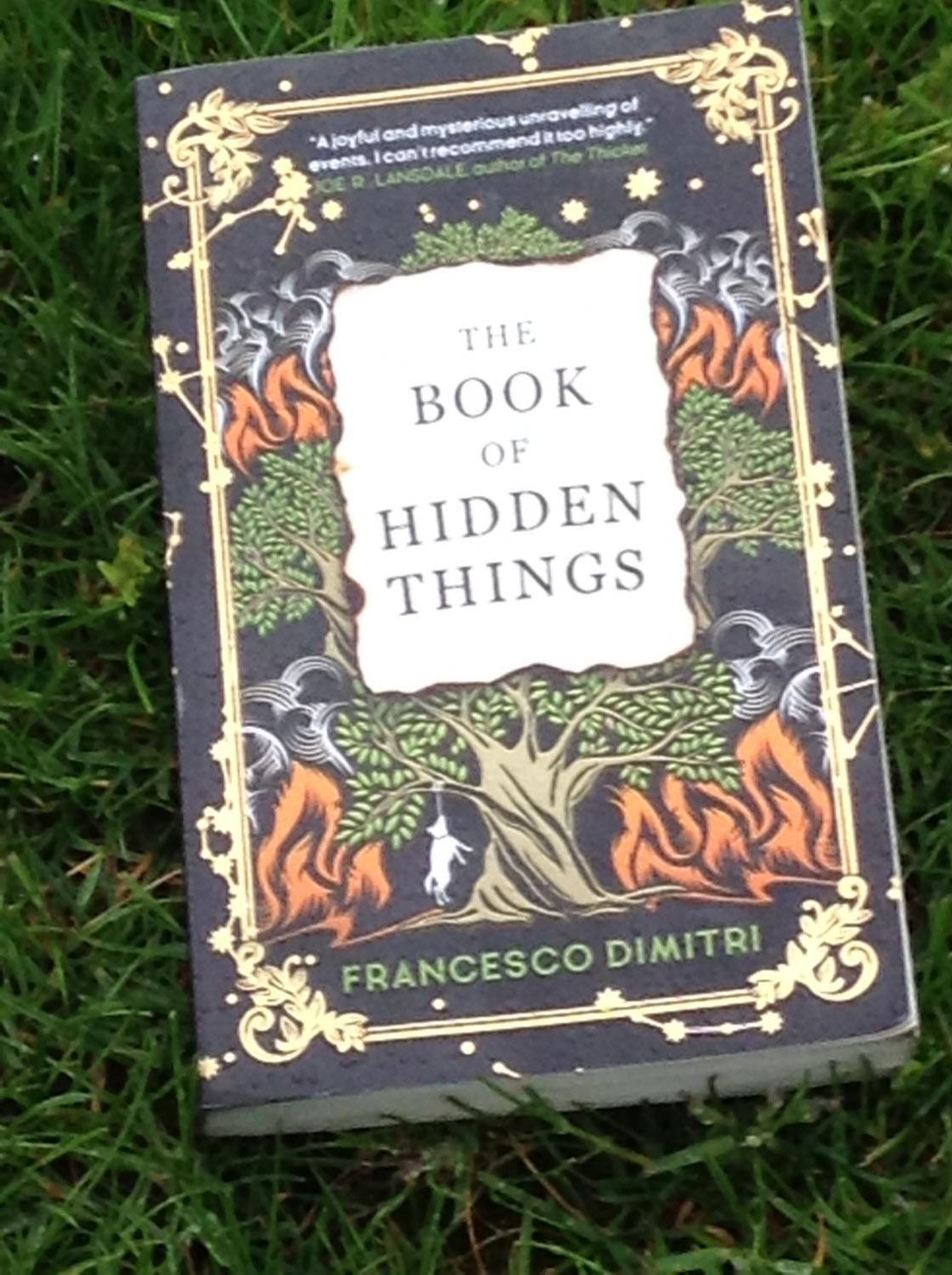 The Book of Hidden Things is a thriller by Francesco Dimitri. It follows the story of four friends who have secrets.