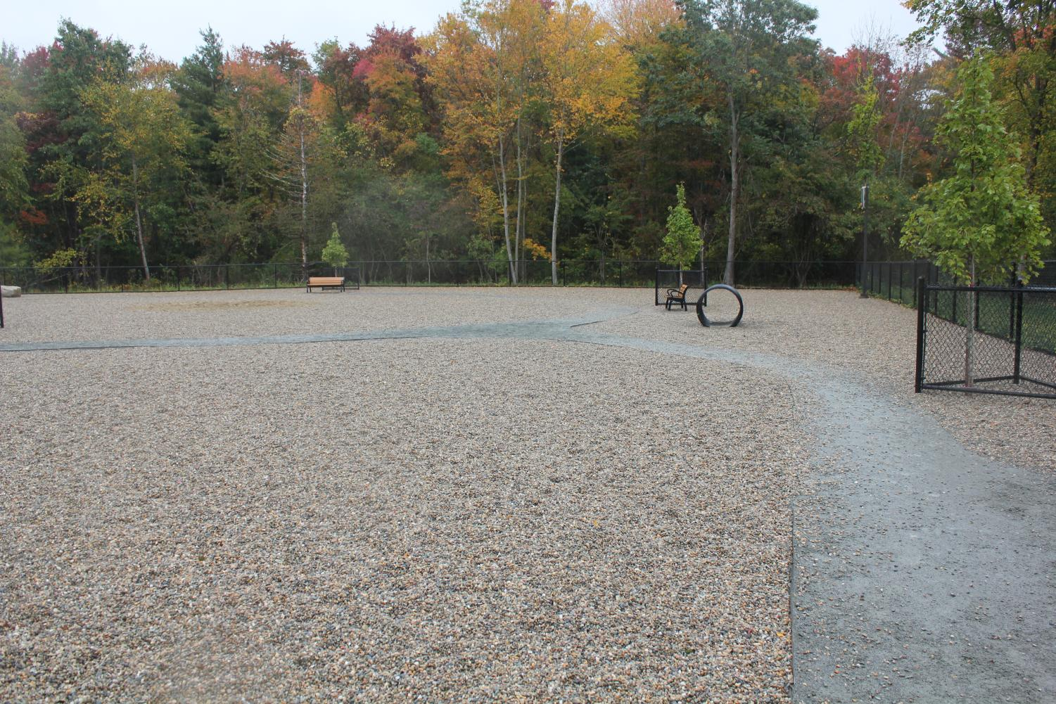 The+Abington+Dog+Park+is+lined+with+trees+brightly+on+rainy+fall+day%2C+October+9%2C+2019.