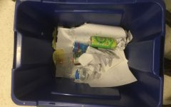How Bad Are Single Use Plastics?