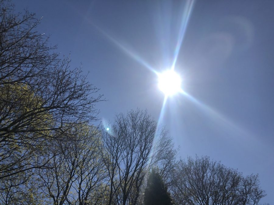 The sun shines over budding trees on Thursday, April 23, 2020 in Abington, Massachusetts.