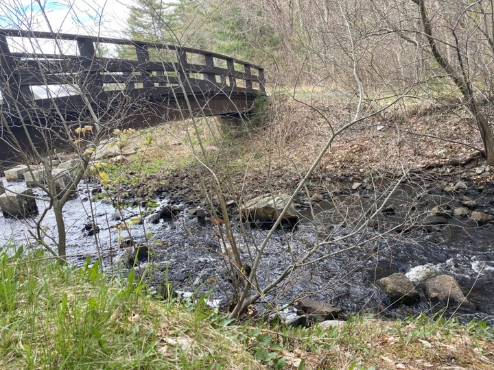 The creek is not very high, but small whitecaps are seen around the rocks where it flows through Ames Nowell State Park in Abington, Mass. Friday, April 30, 2021.