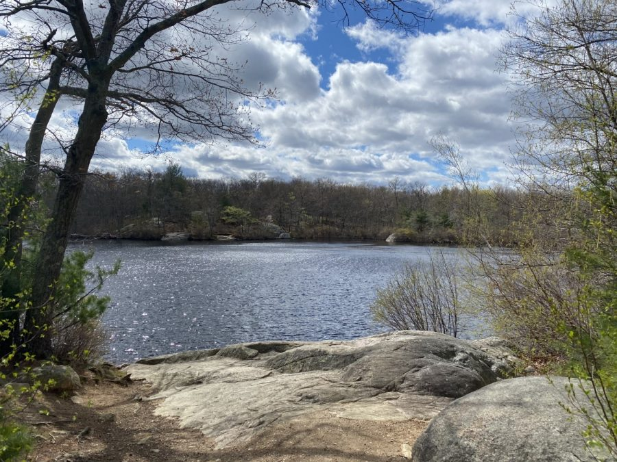 The smooth rocks are a perfect place to sit and enjoy the pond at Ames Nowell State Park in Abington, Mass. Friday, April 30, 2021.