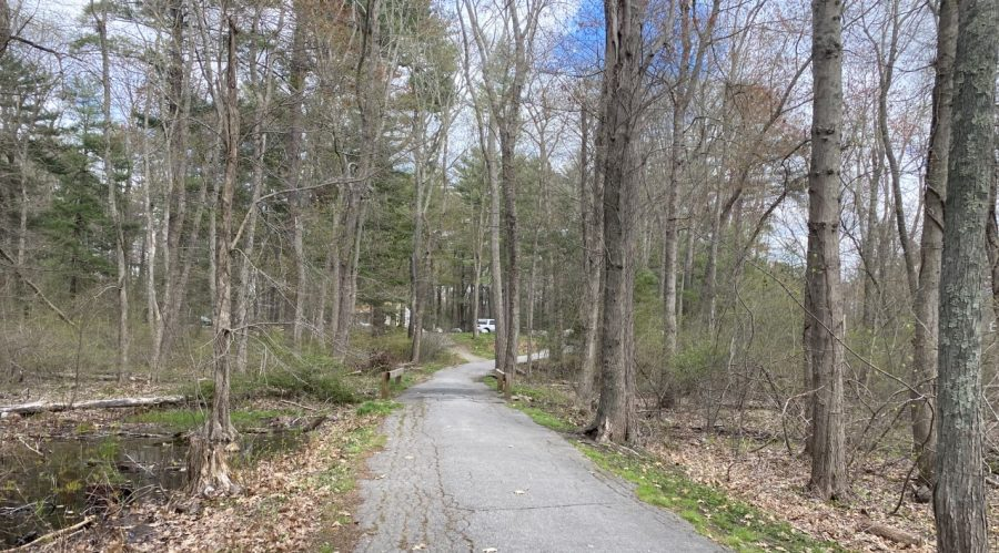 Paved trails like this one are the perfect places to ride bicycles or horses, which are allowed at Ames Nowell State Park in Abington, Mass. Friday, April 30, 2021.