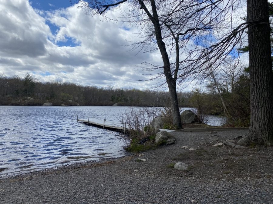 The boardwalk leads to this very scenic view of Cleveland Pond at Ames Nowell State Park in Abington, Mass. Friday, April 30, 2021.
